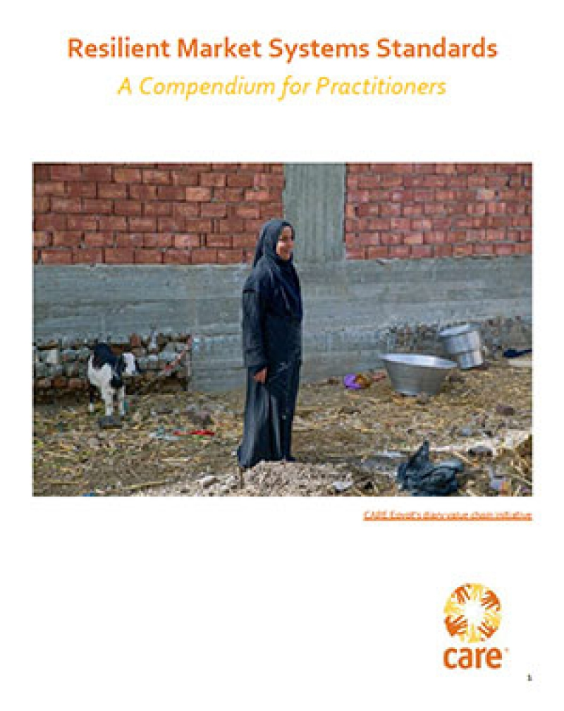 Resilient Market Systems Standards: A compendium for practitioners