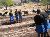 A school food programme in Lesotho