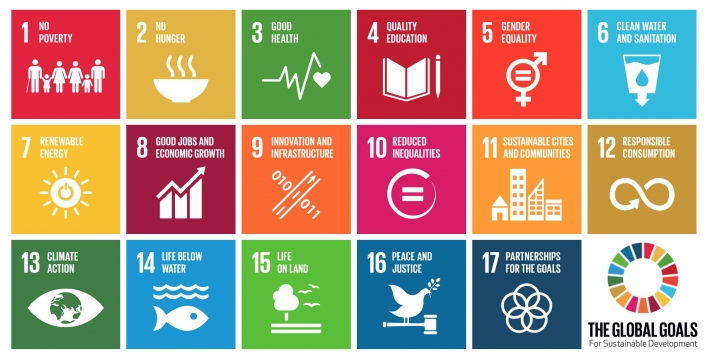 The 17 Global Goals