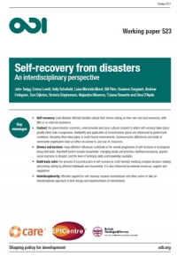 Self-recovery from disasters: an interdisciplinary perspective