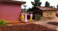 A women's VSLA group beside a crop of cocoa beans laid out to dry