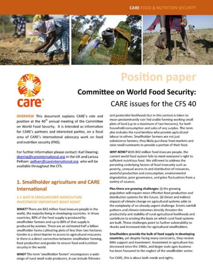 Committee on World Food Security: CARE issues for the CFS 40