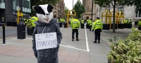 What was this badger doing outside the Conservative Party Conference?