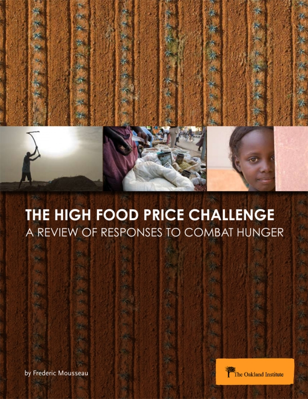 The High Food Price Challenge: A Review of Responses to Combat Hunger
