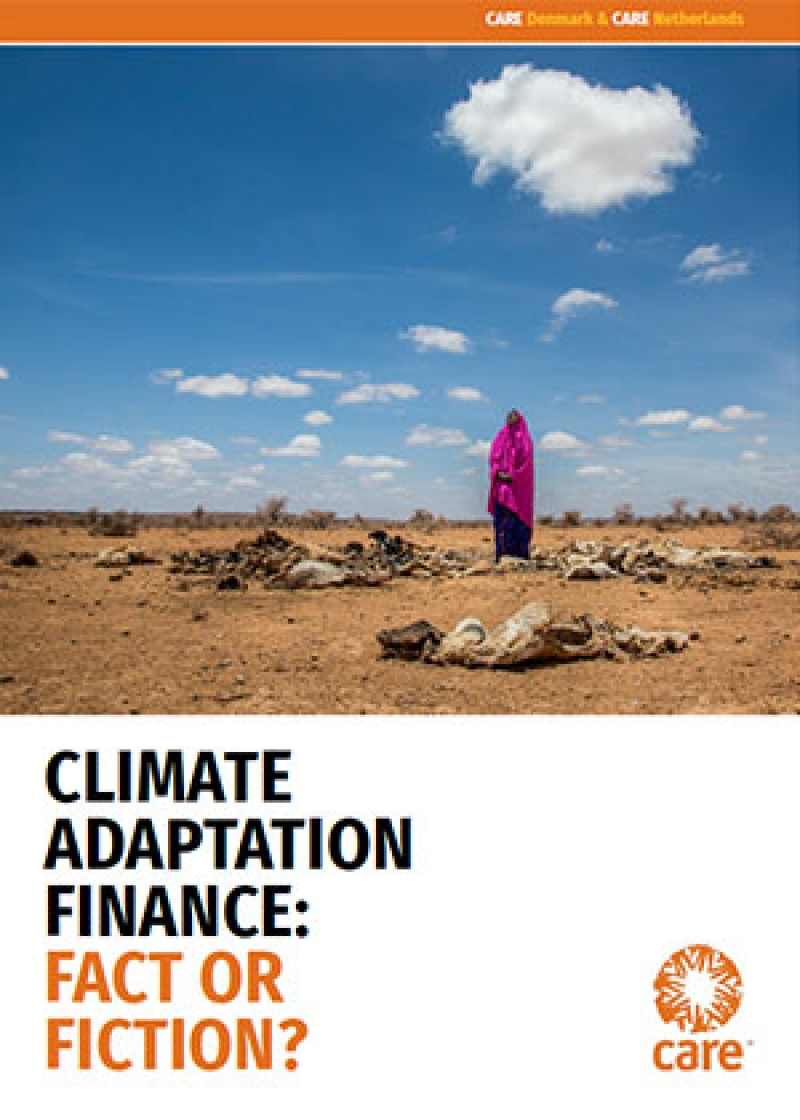 Climate Adaptation Finance: Fact or Fiction?