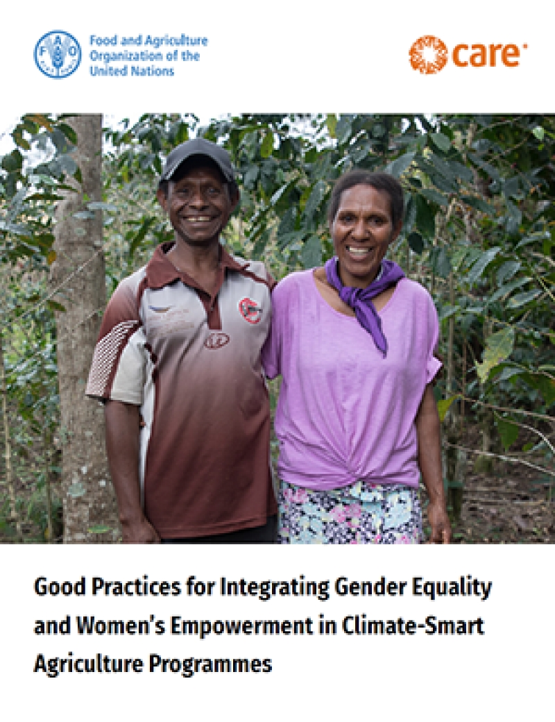 Good practices for integrating gender equality and women's empowerment in climate-smart agriculture programmes