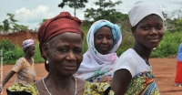 Cocoa farmers in Cote d'Ivoire participating in the Cocoa Life partnership