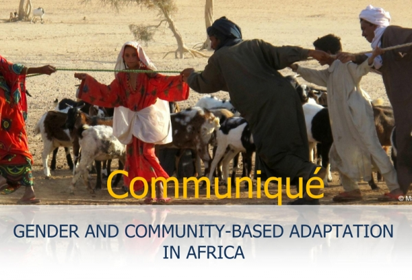 Gender and Community-based Adaptation in Africa