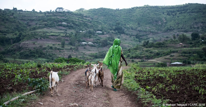 A woman with her livestock in Ethiopia