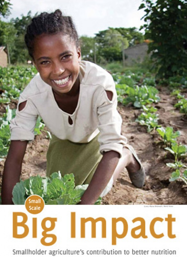Small Scale, Big Impact: Smallholder agriculture's contribution to better nutrition